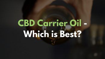 Which is the CBD Carrier Oil